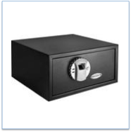 BARSKA Biometric Safe Feature Image
